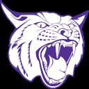 Berryville logo 19