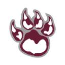 Saint Baldricks Fundraiser - View 2 logo