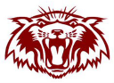 PLANO SENIOR HIGH logo