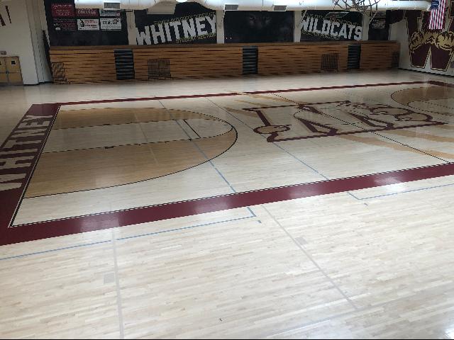 Wildcat Gymnasium 0