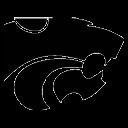 Salina Tourney logo