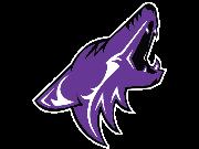 The logo of https://www.gocoyotesms.com/