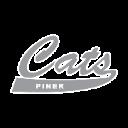 Piner logo 1