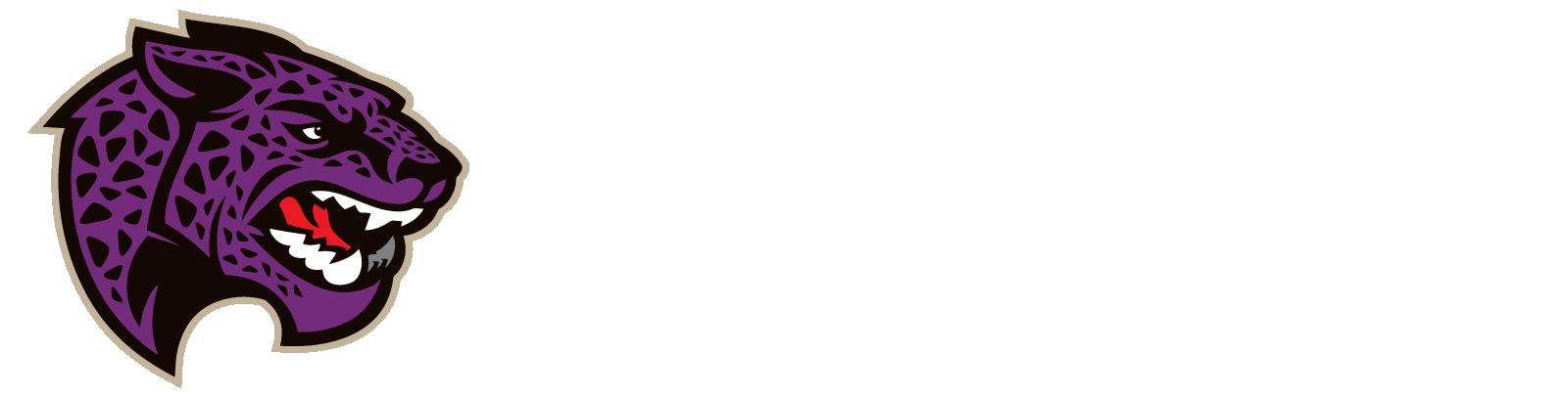 LBJ image