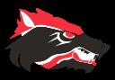 Wichita Falls High School logo 6