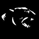 Lufkin Panthers logo 32