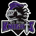Old Bridge HS logo