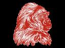 Davenport High School logo