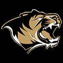 BHS TIGERS logo 78