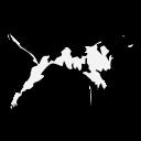 Van Buren logo 95