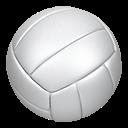 Volleypalooza Varsity Tournament logo