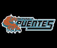 SSG Manuel R. Puentes Logo