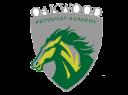 Oakwood logo 1