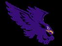 Danville logo 1