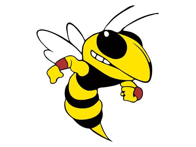 Hornet Athletics Mid Week Sports Report