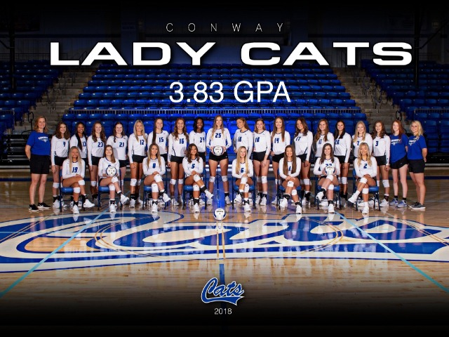 Lady Cats earn AVCA Academic Award with a combined 3.83 GPA