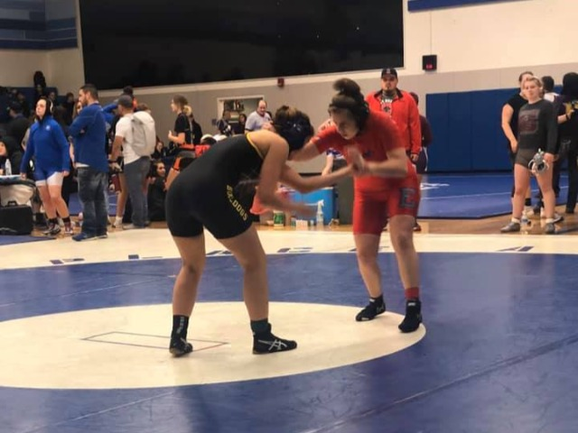 Girls Varsity Wrestling Gallery Images