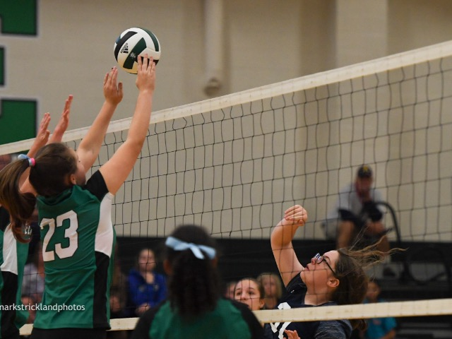 Girls 7th Grade Volleyball Gallery Images