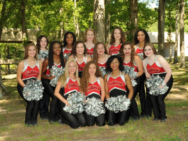 2018-19 White Hall High School Steppers