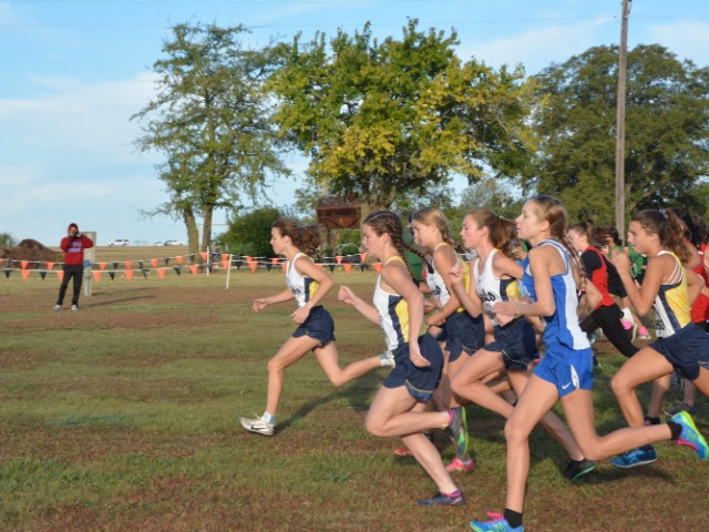 2019 District 11-5A Championship - Start of Varsity Race