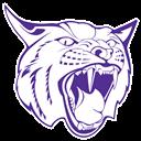 Berryville logo 12
