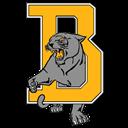 Bergman logo